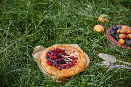 Foto de Pastel con frutas, plato con frutas y utensilios sobre la hierba verde - Imagen libre de derechos