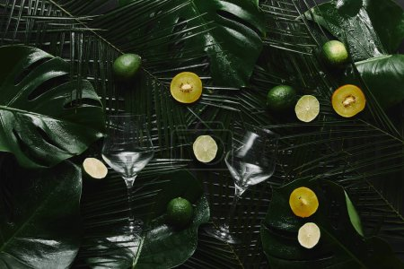 top view of two empty glasses, fresh fruits and green tropical leaves