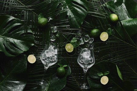 top view of glasses with ice cubes, fresh limes and green tropical leaves