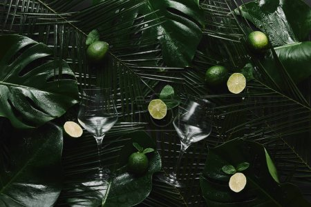 top view of two empty glasses, fresh limes and green tropical leaves