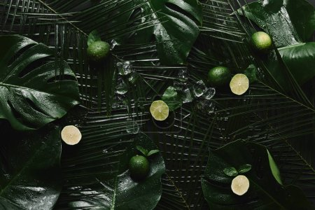 top view of whole and sliced limes, ice cubes and beautiful green tropical leaves