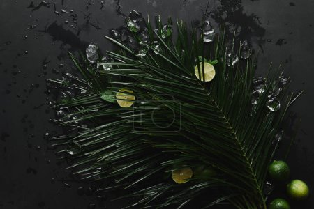 top view of fresh limes, ice cubes and beautiful green palm leaves on black