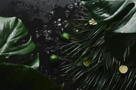 top view of whole and sliced limes, ice cubes and beautiful green tropical leaves on black
