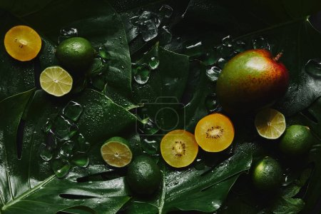 top view of fresh ripe fruits, ice cubes and green tropical leaves on black