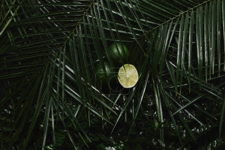 close-up view of whole and sliced limes and beautiful green wet tropical leaves