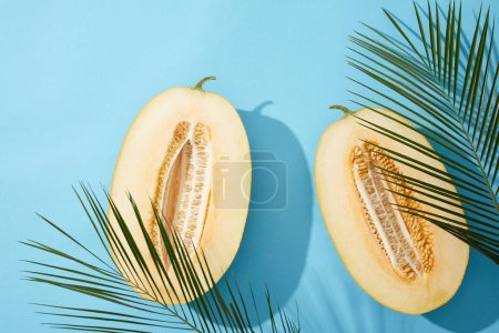 top view of fresh ripe sweet halved melon and green palm leaves on blue