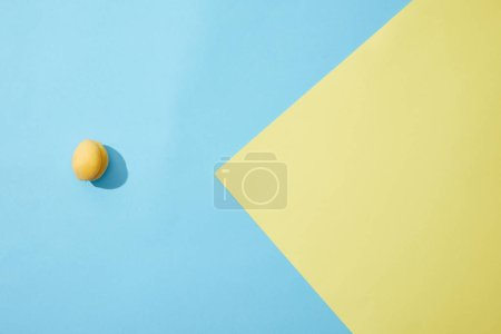 Photo for Top view of single ripe apricot on blue and yellow background - Royalty Free Image