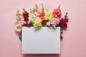 """Постер, картина, фотообои """"вид сверху красивые нежные цветы и заглушку на розовый"""""""