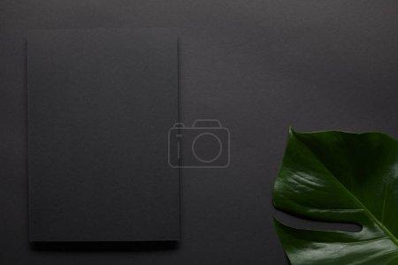 Black notebook on black background with monstera leaf