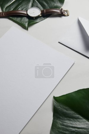 Blank paper and watch on white marble background with monstera leaves