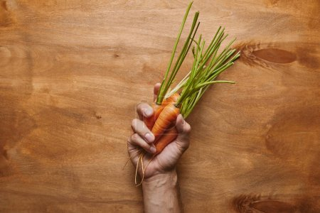 Male hand with organic carrots on wooden table