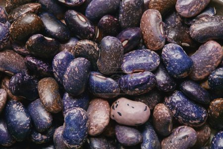 Foto de Vista cercana de crudo frijol morado seco habas textura - Imagen libre de derechos