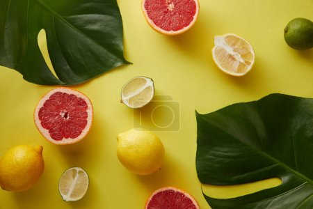 top view of palm tree leaves, grapefruits and lemons on yellow surface