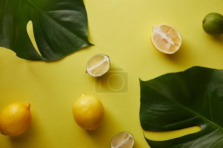 top view of palm tree leaves and lemons on yellow surface