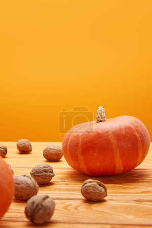 fresh ripe pumpkins and walnuts on wooden surface on orange background