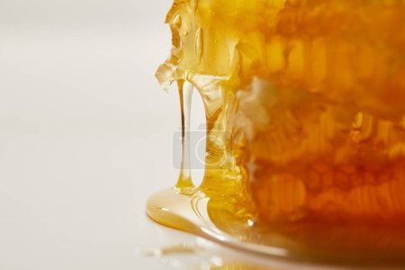 close up view of sweet beeswax and honey on white background