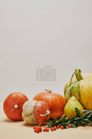 autumnal decoration with pumpkins, firethorn berries and leaves on table