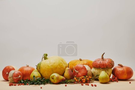 Photo for Autumn decoration with pumpkins, firethorn berries and ripe yummy pears on tabletop - Royalty Free Image
