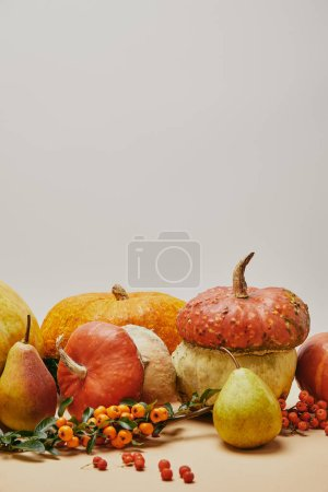 autumn decoration with pumpkins, pyracantha berries and ripe yummy pears on table