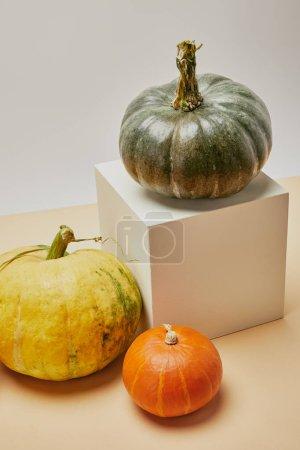 Photo pour Vue de la forte inclinaison de décoration automnale avec des citrouilles et cube sur table - image libre de droit