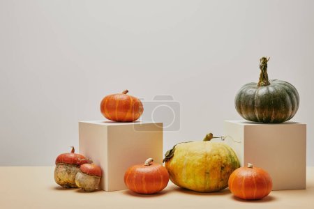 Photo for Autumnal decoration with pumpkins on two cubes and beige table - Royalty Free Image