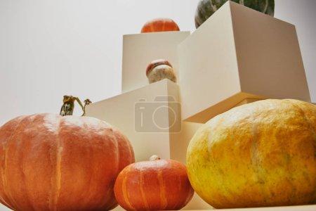 Foto de Vista de ángulo bajo de decoración otoñal con calabazas en cubos - Imagen libre de derechos