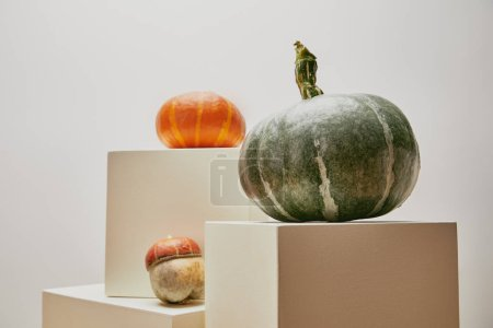 Photo for Autumnal decoration with pumpkins on cubes isolated on white - Royalty Free Image