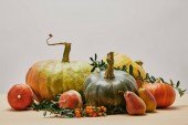 autumnal decor with pumpkins, tasty pears and pyracantha berries on table