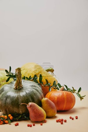 Photo for Autumnal decor with different pumpkins, pears and firethorn berries on table - Royalty Free Image