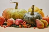 gros plan de décoration automne aux citrouilles, pommes, poires et firethorn baies sur table