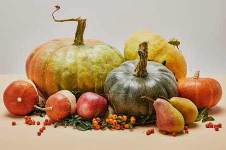 Photo for Autumnal decoration with pumpkins, apple, pears and firethorn berries on table - Royalty Free Image