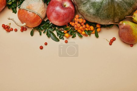 top view of autumnal decoration with pumpkins, apple, pears and firethorn berries on table