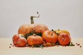 orange pumpkins and firethorn berries on table as autumnal decor