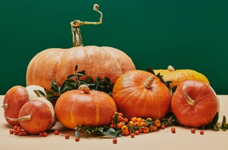autumnal decoration with pumpkins, firethorn berries and green leaves on table