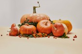 seasonal decoration with pumpkins and firethorn berries on table