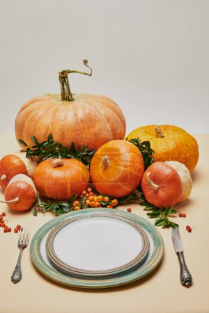 Photo for Plates, fork, knife and pumpkins with firethorn berries on table - Royalty Free Image