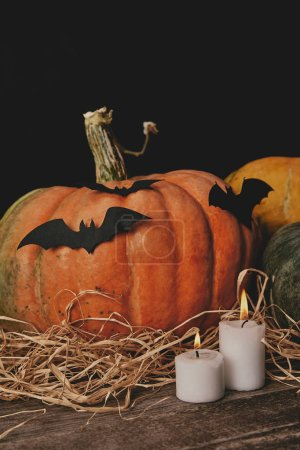 pumpkins, candles and paper bats on table, halloween concept