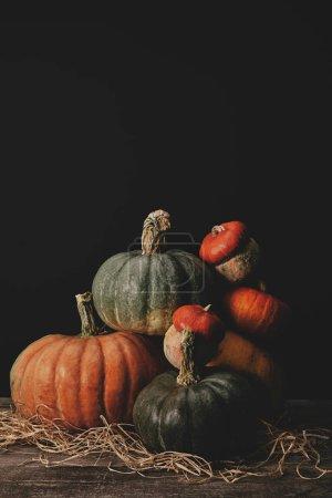 Photo pour Pile de citrouilles mûres sur la table, concept halloween - image libre de droit