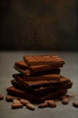 sweet gourmet chocolate pieces with cocoa powder, nuts and cocoa beans on grey