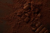 top view of tasty chocolate pieces and gourmet cocoa powder on dark background