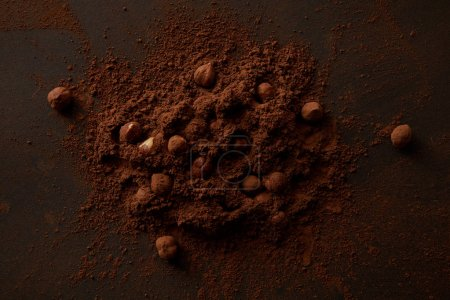 top view of gourmet cocoa powder and hazelnuts on dark background