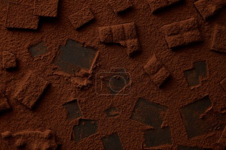 top view of delicious chocolate pieces and cocoa powder