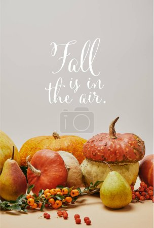 Photo pour Décoration automnale avec les citrouilles, les baies de buisson ardent et poires délicieuses mûres sur table avec le lettrage de l'automne est dans l'Air - image libre de droit