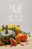 autumnal decoration with pumpkins, firethorn berries and ripe yummy pears on tabletop with FALL IS IN THE AIR lettering