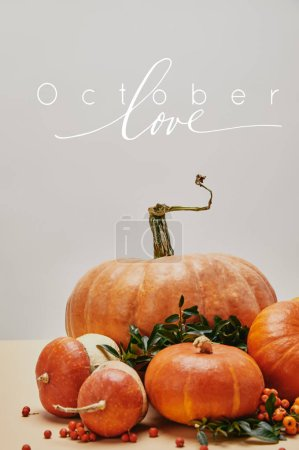 beautiful autumnal decoration with pumpkins and firethorn berries on table with OCTOBER LOVE lettering