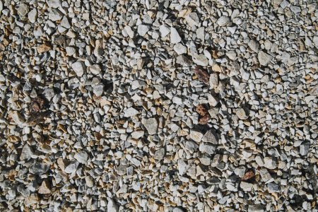 Photo for Top view of textured pebble stones ground - Royalty Free Image