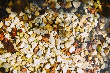 Photo pour Vue du dessus des pierres de galets jaunes et blanches texturées - image libre de droit