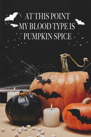 "paper bats and spider on halloween pumpkins with ""at this point my blood type is pumpkin spice"" lettering"