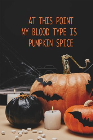 """paper bats and spider on halloween pumpkins with """"at this point my blood type is pumpkin spice"""" lettering"""