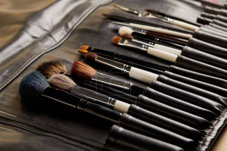 close-up shot of leather holder with professional makeup brushes